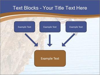 0000078885 PowerPoint Templates - Slide 70