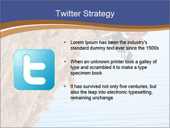 0000078885 PowerPoint Templates - Slide 9