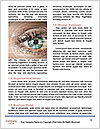 0000078887 Word Templates - Page 4