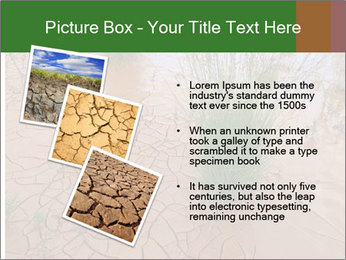 0000078898 PowerPoint Template - Slide 17