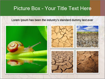 0000078898 PowerPoint Template - Slide 19