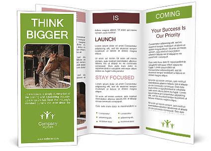 0000078899 Brochure Template