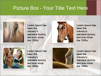 0000078899 PowerPoint Template - Slide 14