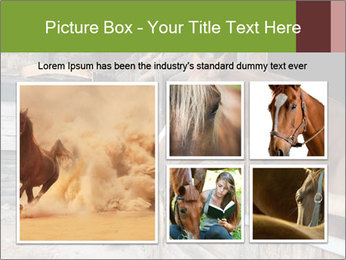 0000078899 PowerPoint Template - Slide 19