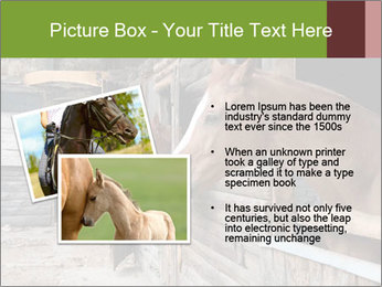 0000078899 PowerPoint Template - Slide 20