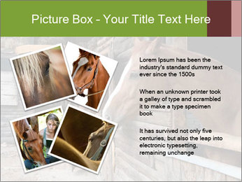 0000078899 PowerPoint Template - Slide 23