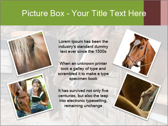 0000078899 PowerPoint Template - Slide 24