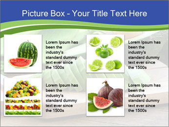 0000078903 PowerPoint Template - Slide 14