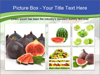 0000078903 PowerPoint Template - Slide 19