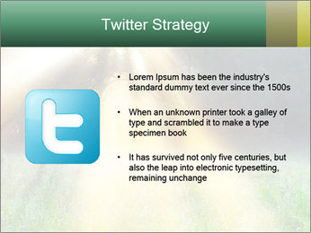 0000078914 PowerPoint Template - Slide 9