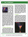 0000078917 Word Template - Page 3