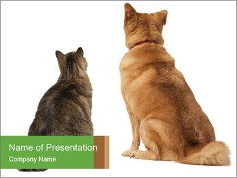 0000078923 PowerPoint Templates - Slide 1
