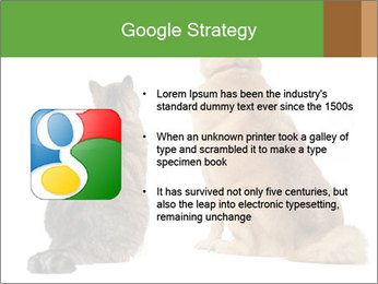 0000078923 PowerPoint Templates - Slide 10