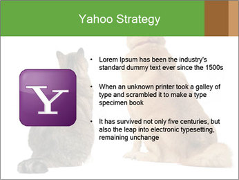 0000078923 PowerPoint Templates - Slide 11