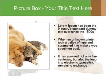0000078923 PowerPoint Templates - Slide 13
