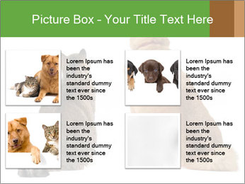 0000078923 PowerPoint Template - Slide 14