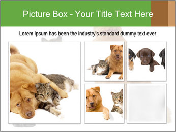 0000078923 PowerPoint Templates - Slide 19