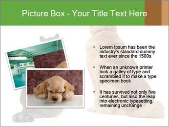 0000078923 PowerPoint Template - Slide 20