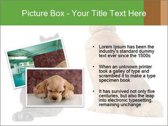 0000078923 PowerPoint Templates - Slide 20