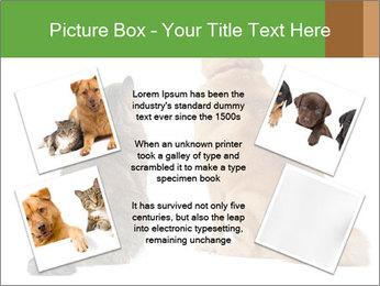 0000078923 PowerPoint Templates - Slide 24