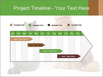 0000078923 PowerPoint Templates - Slide 25