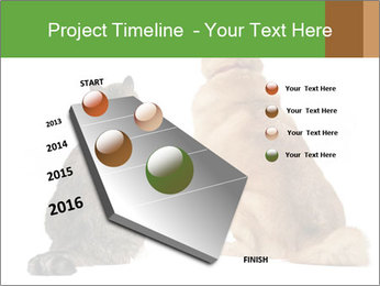 0000078923 PowerPoint Template - Slide 26