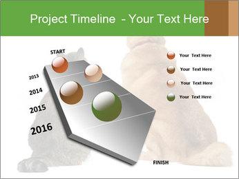 0000078923 PowerPoint Templates - Slide 26
