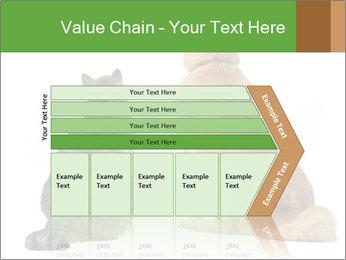 0000078923 PowerPoint Templates - Slide 27