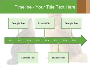 0000078923 PowerPoint Template - Slide 28