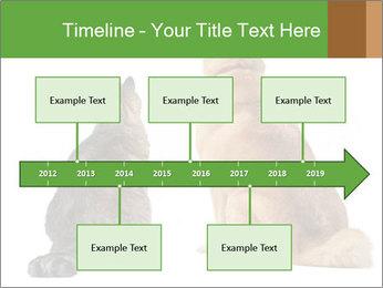 0000078923 PowerPoint Templates - Slide 28