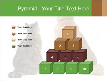 0000078923 PowerPoint Templates - Slide 31