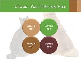 0000078923 PowerPoint Templates - Slide 38
