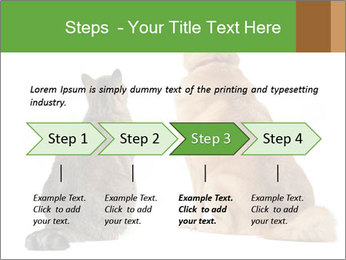 0000078923 PowerPoint Templates - Slide 4