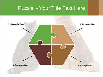 0000078923 PowerPoint Templates - Slide 40
