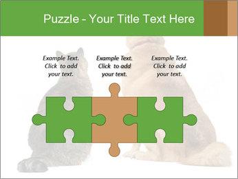 0000078923 PowerPoint Templates - Slide 42