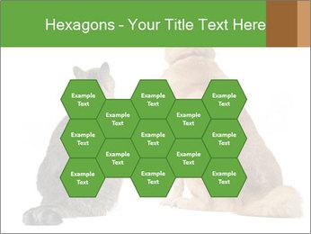 0000078923 PowerPoint Templates - Slide 44