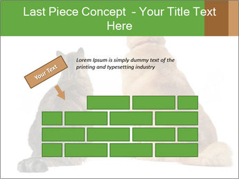 0000078923 PowerPoint Template - Slide 46