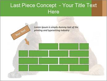0000078923 PowerPoint Templates - Slide 46