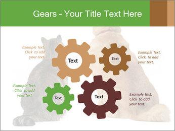0000078923 PowerPoint Templates - Slide 47