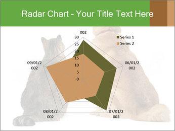 0000078923 PowerPoint Templates - Slide 51