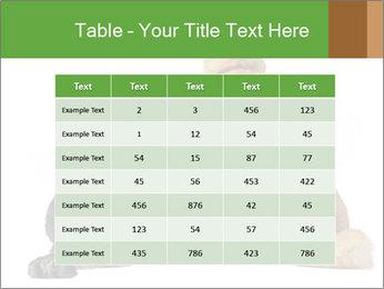 0000078923 PowerPoint Templates - Slide 55