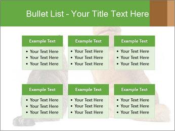 0000078923 PowerPoint Templates - Slide 56