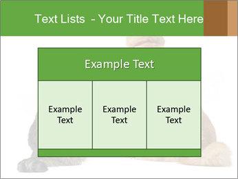 0000078923 PowerPoint Templates - Slide 59