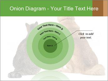 0000078923 PowerPoint Templates - Slide 61