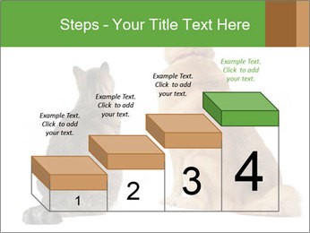 0000078923 PowerPoint Templates - Slide 64