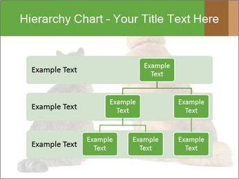 0000078923 PowerPoint Templates - Slide 67
