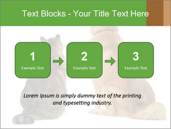 0000078923 PowerPoint Templates - Slide 71