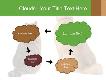 0000078923 PowerPoint Templates - Slide 72