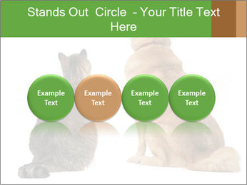 0000078923 PowerPoint Templates - Slide 76