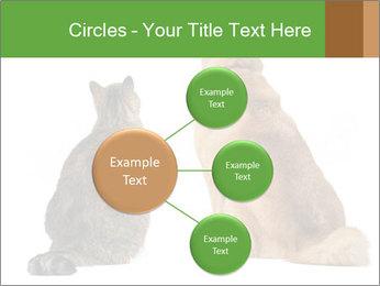 0000078923 PowerPoint Templates - Slide 79